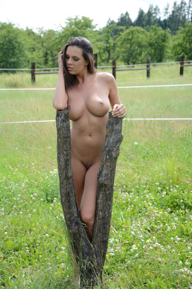 Naked On The Pasture