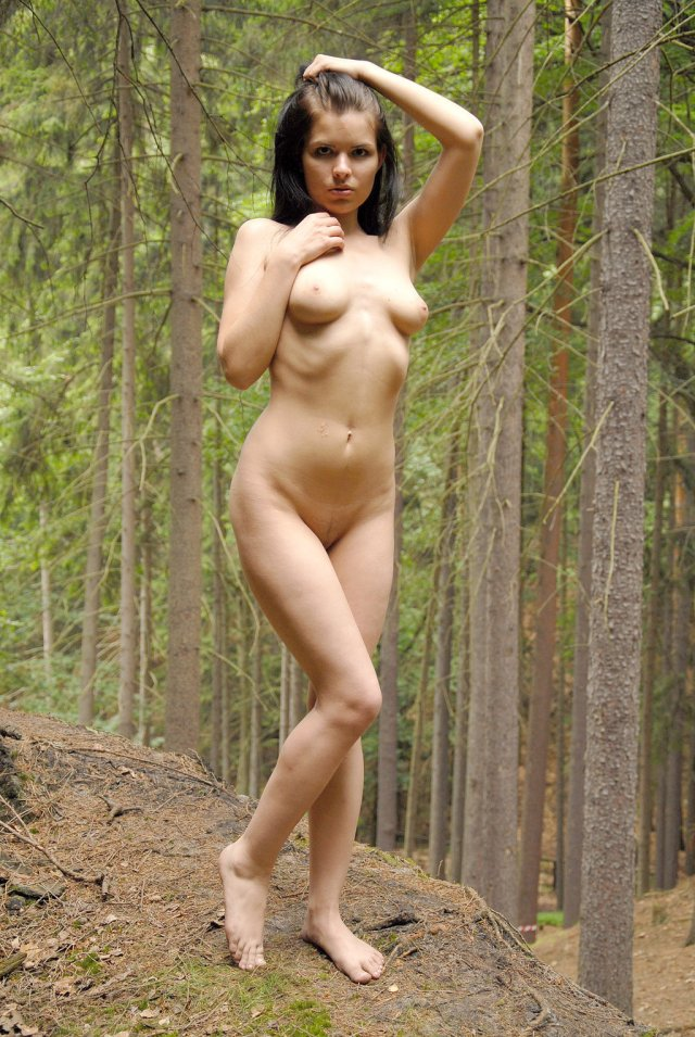 Beauty In The Forrest